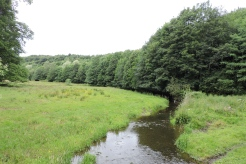 The Leet Water from Dunglass Bridge