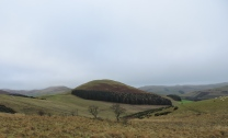 The principal summits are mainly in the east with names like Hedgehope, Comb Fell and Bloody Bush Edge.